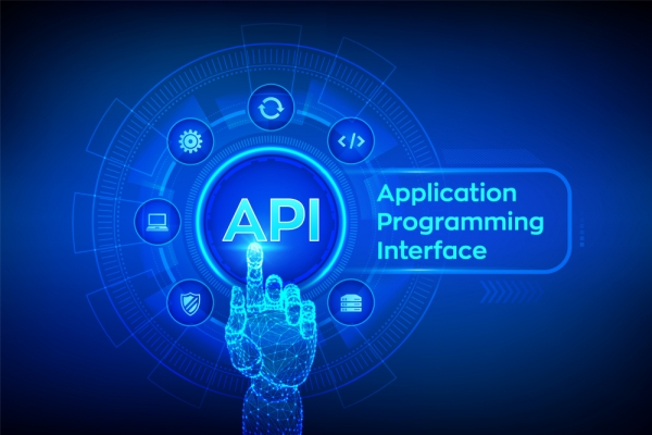 Flight API Integration